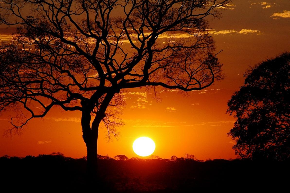 Resultado de imagem para por do sol